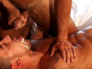 Big Cock, Blowjob, Bukkake, Dick, Facial, Hardcore, HD, Oral Sex, Shemale, Sissy,