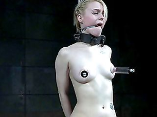 Thick metal collar on a cute blonde in his pain dungeon
